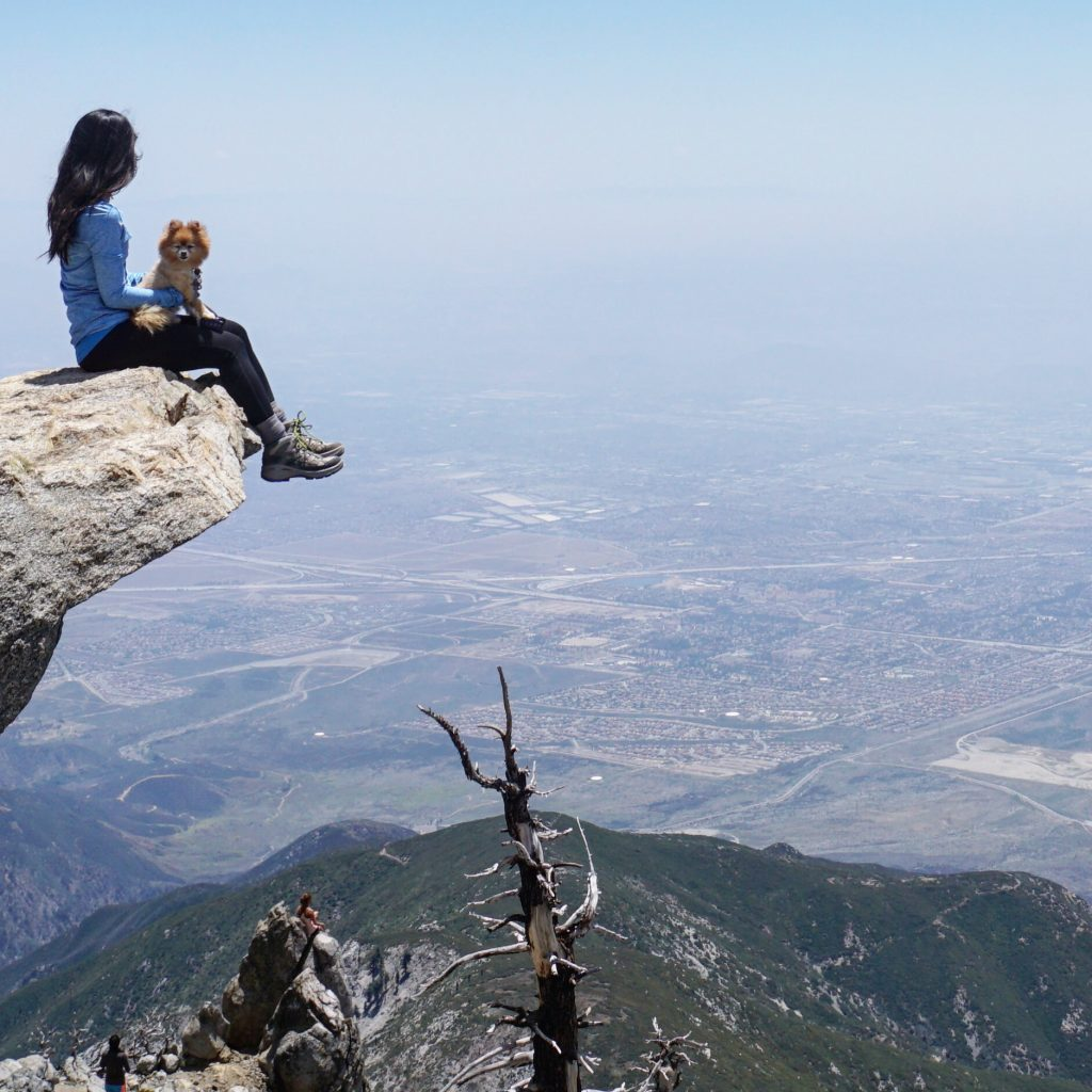 Healthy Hikes: Cucamonga Peak